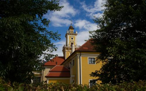 Jadel - Rakousko (5 of 1)
