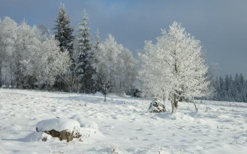 Zima na Šumavě (12 of 14)