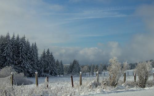 Zima na Šumavě (6 of 14)