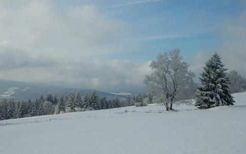 Zima na Šumavě (8 of 14)